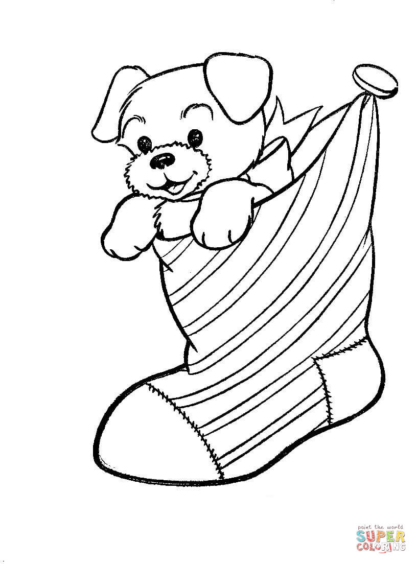 a puppy dog in a christmas stocking coloring page free printable