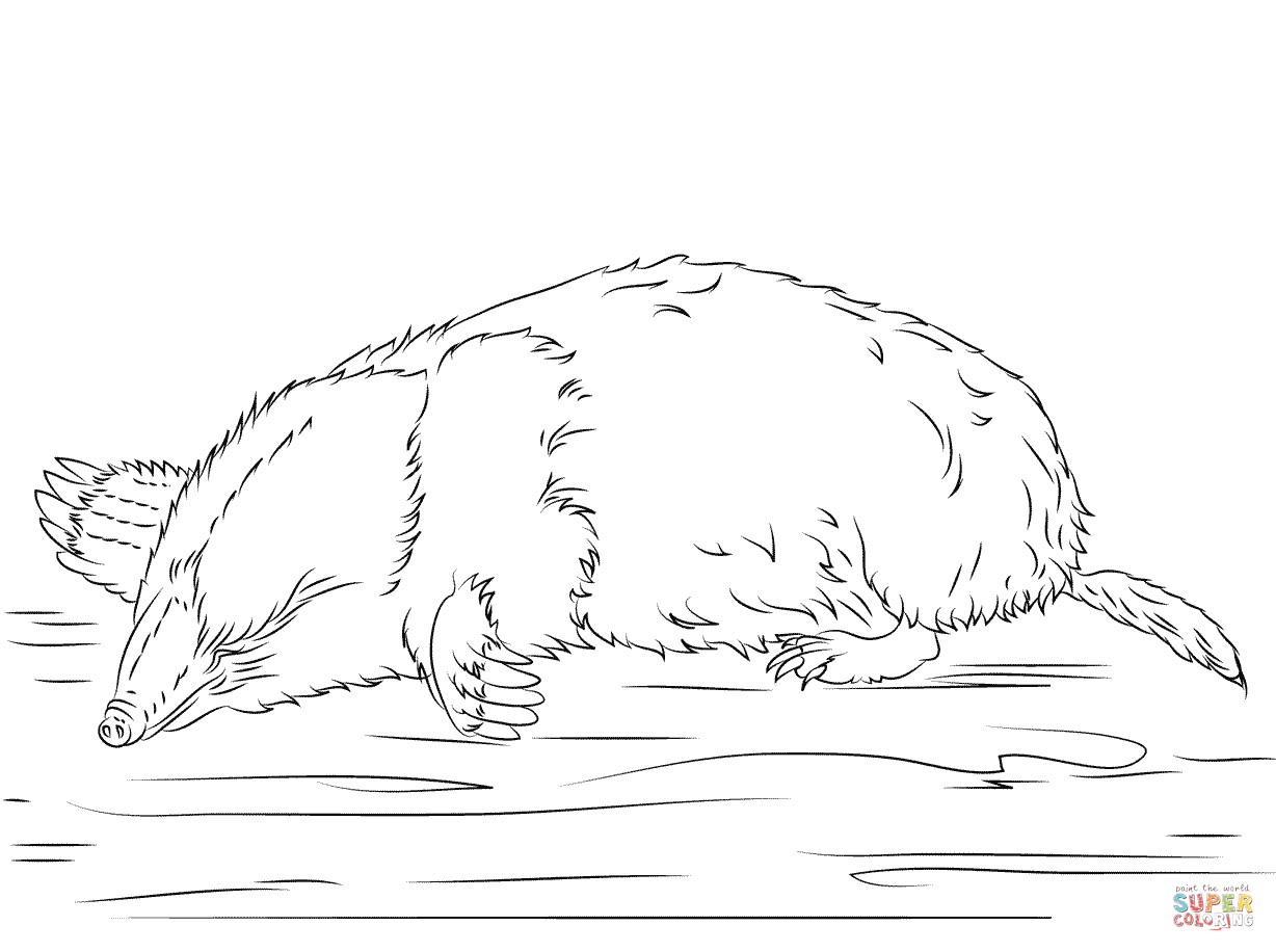 Cute Mole Coloring Page