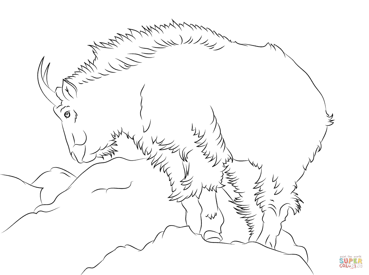 Rocky Mountain Goat Coloring Page