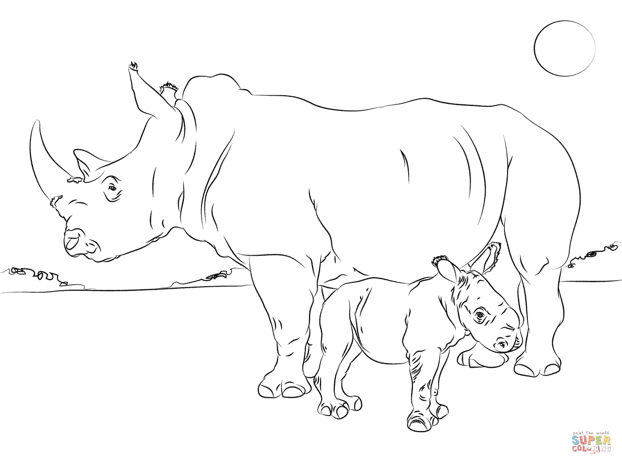 baby rhinoceros colouring pages