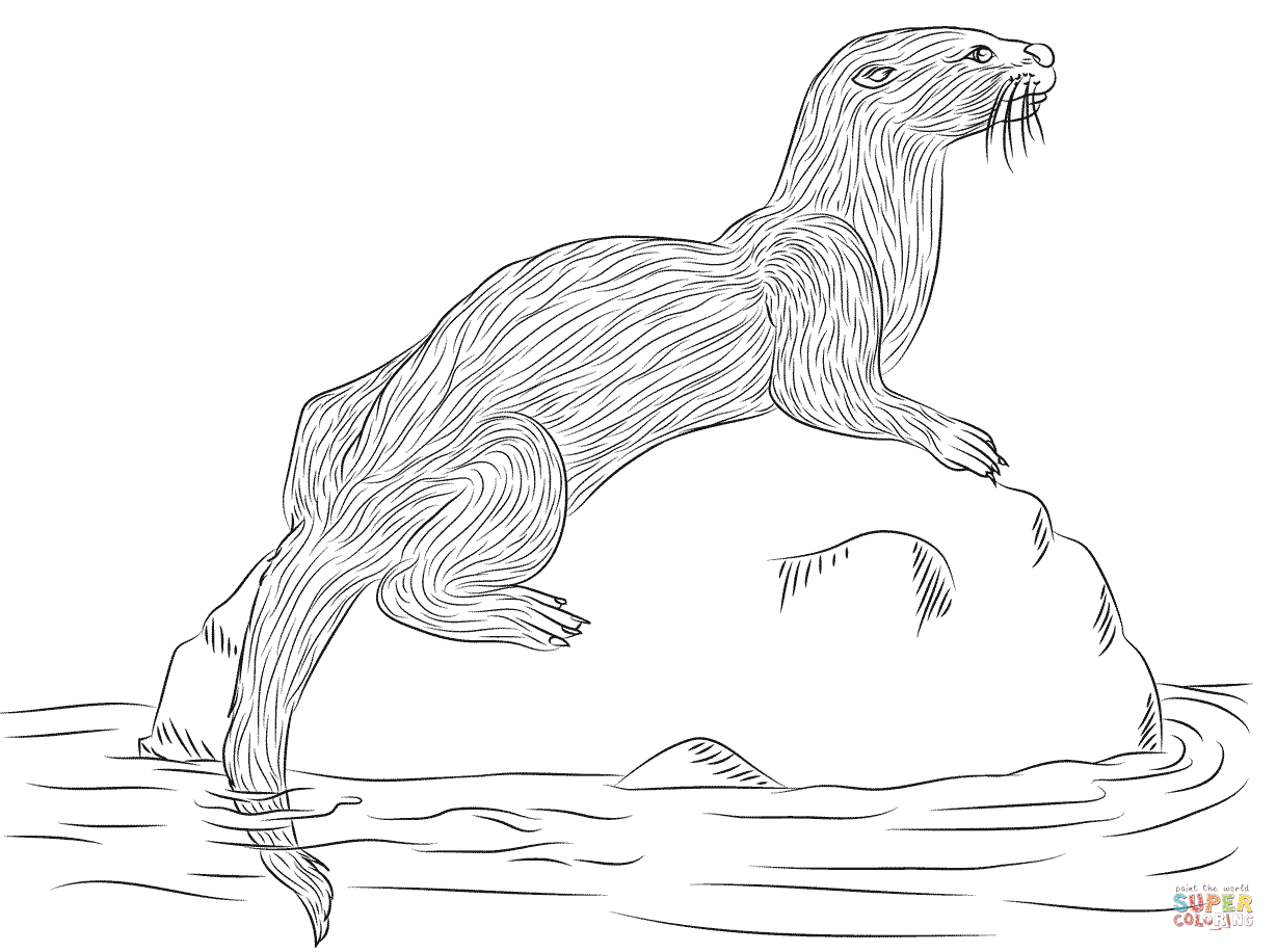 River Otter Coloring Page