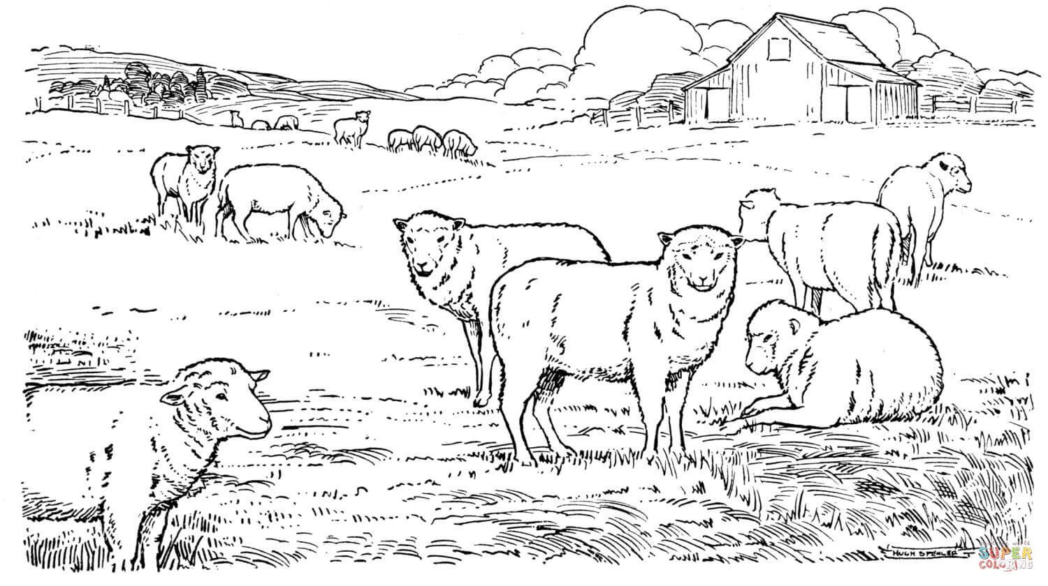 Sheep Herd Coloring Page