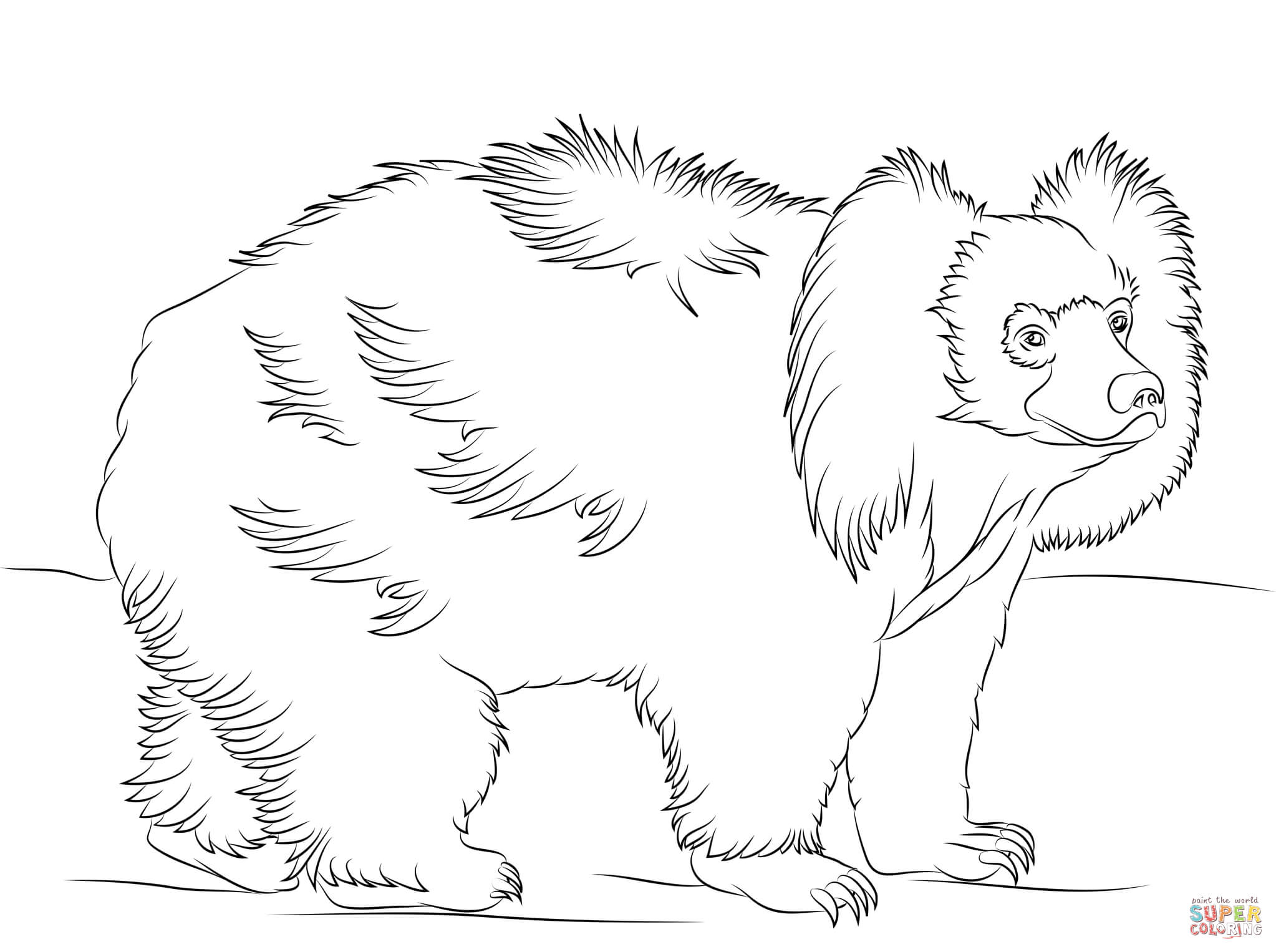 sloth bear walking coloring page free printable coloring pages