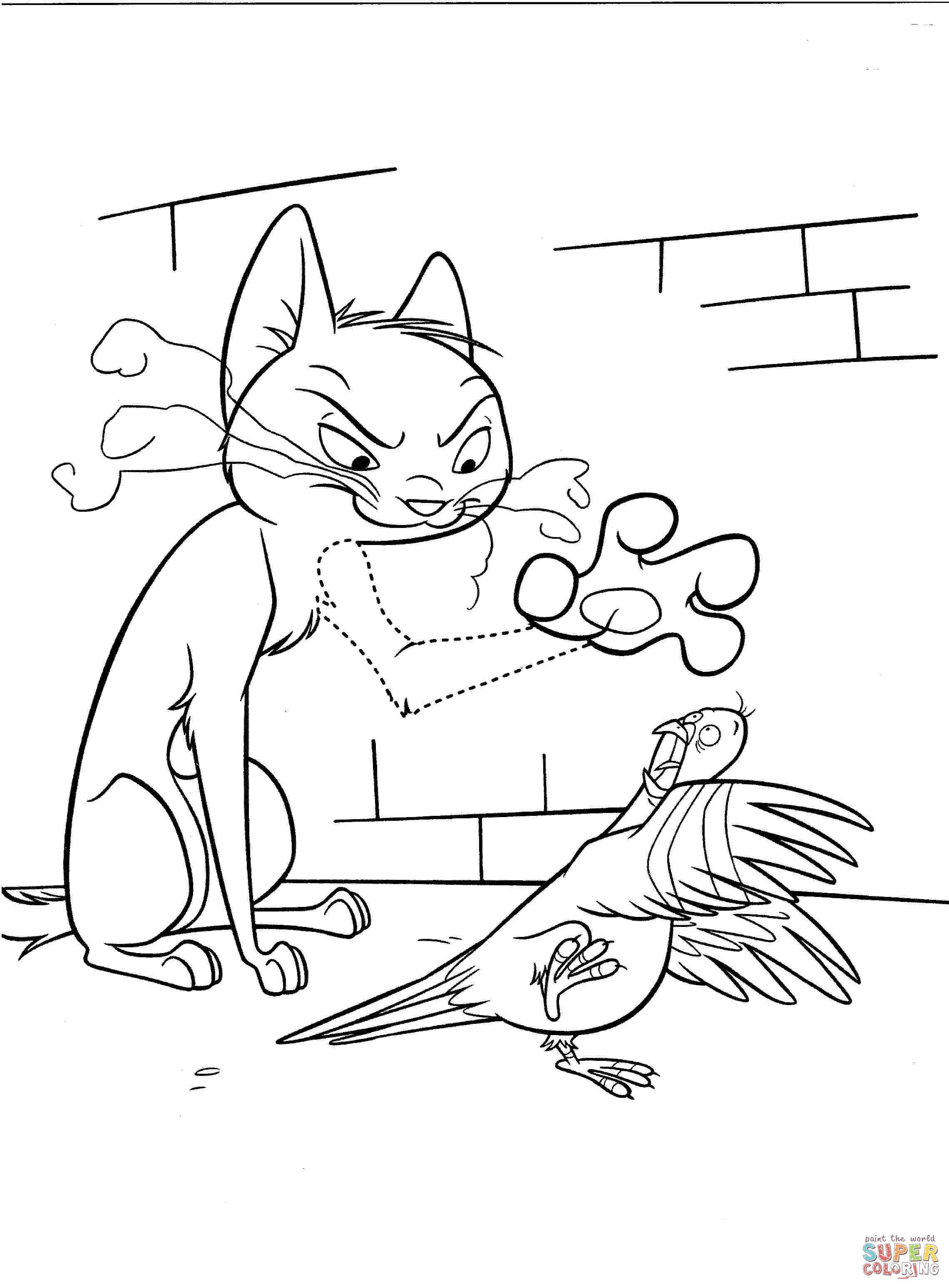 Disegno Di Gatto Arrabbiato E Colomba Da Colorare