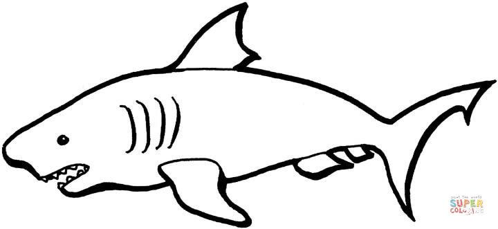 australian shark coloring page free printable coloring pages