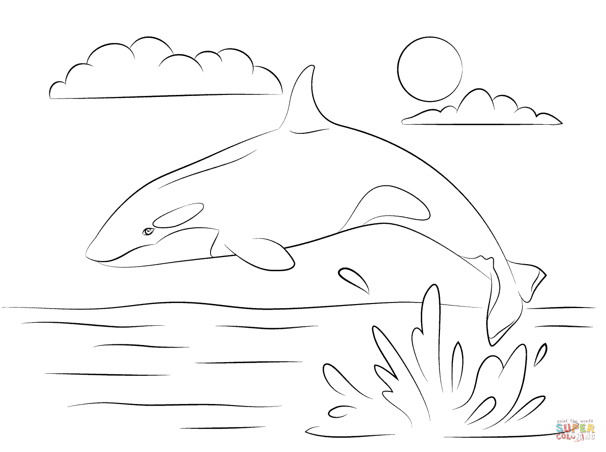 Orca Whale Pages Coloring Pages