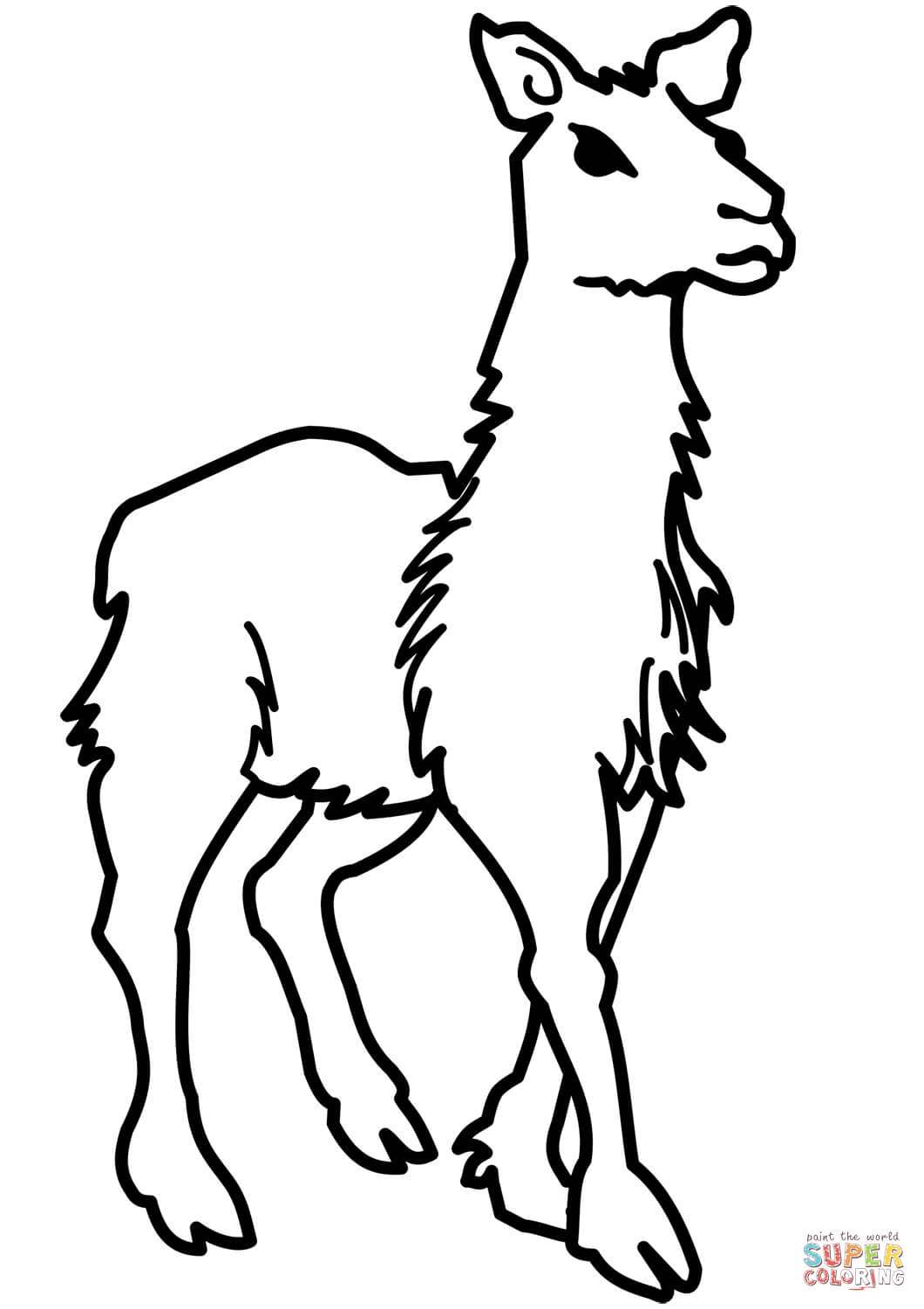 Llama Printable Coloring Pages