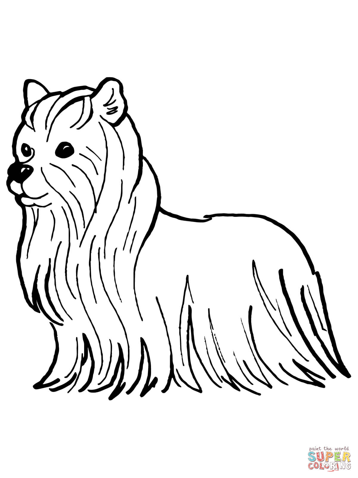 Yorkie Coloring Pages Free Coloring Pages Download | Xsibe yorkie ...