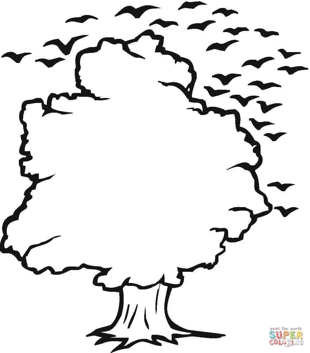 Tree And Birds Outline Coloring Page