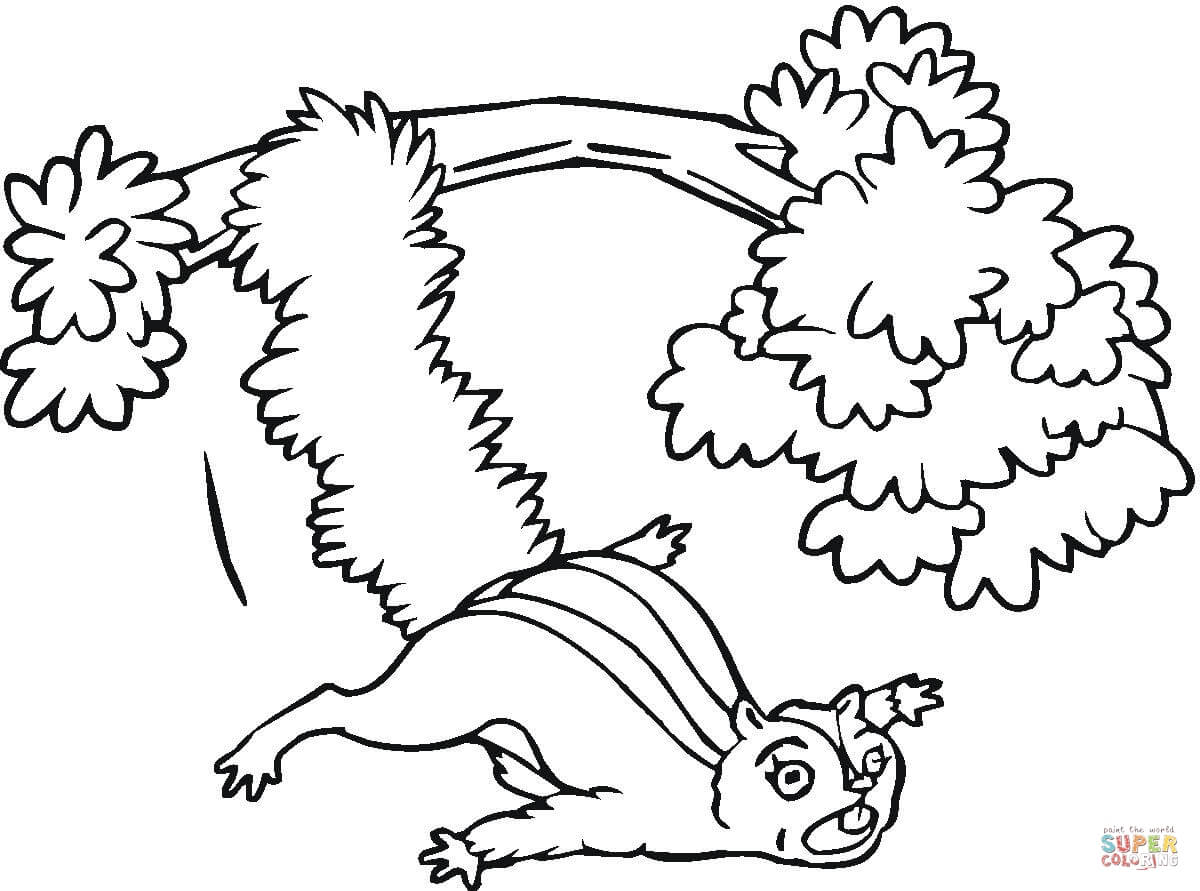 cute flying squirrel coloring page free printable coloring pages