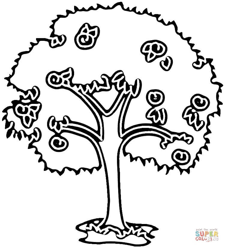 apple tree coloring page sketch template