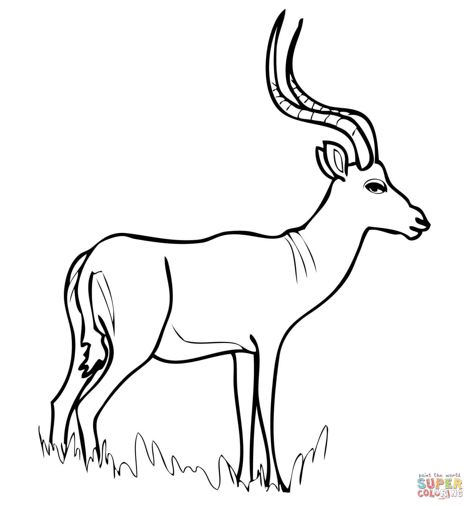 Gazelle Coloring Pages