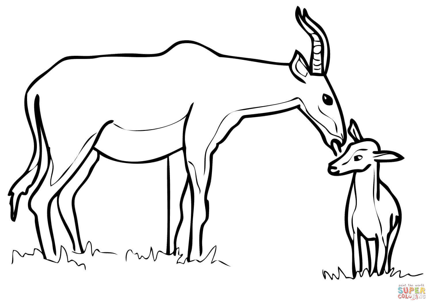 Hartebeest Antelope Family Coloring Page