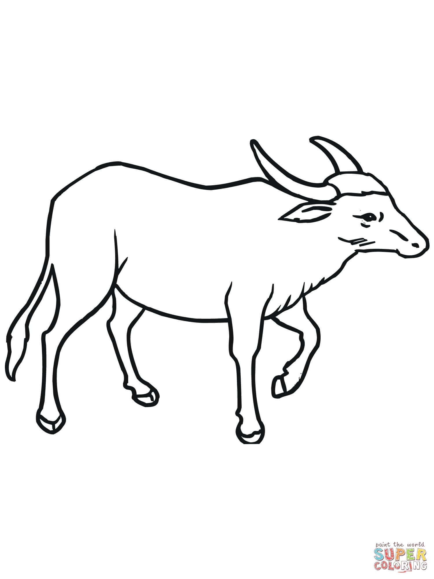 Wild Asian Water Buffalo Coloring Page