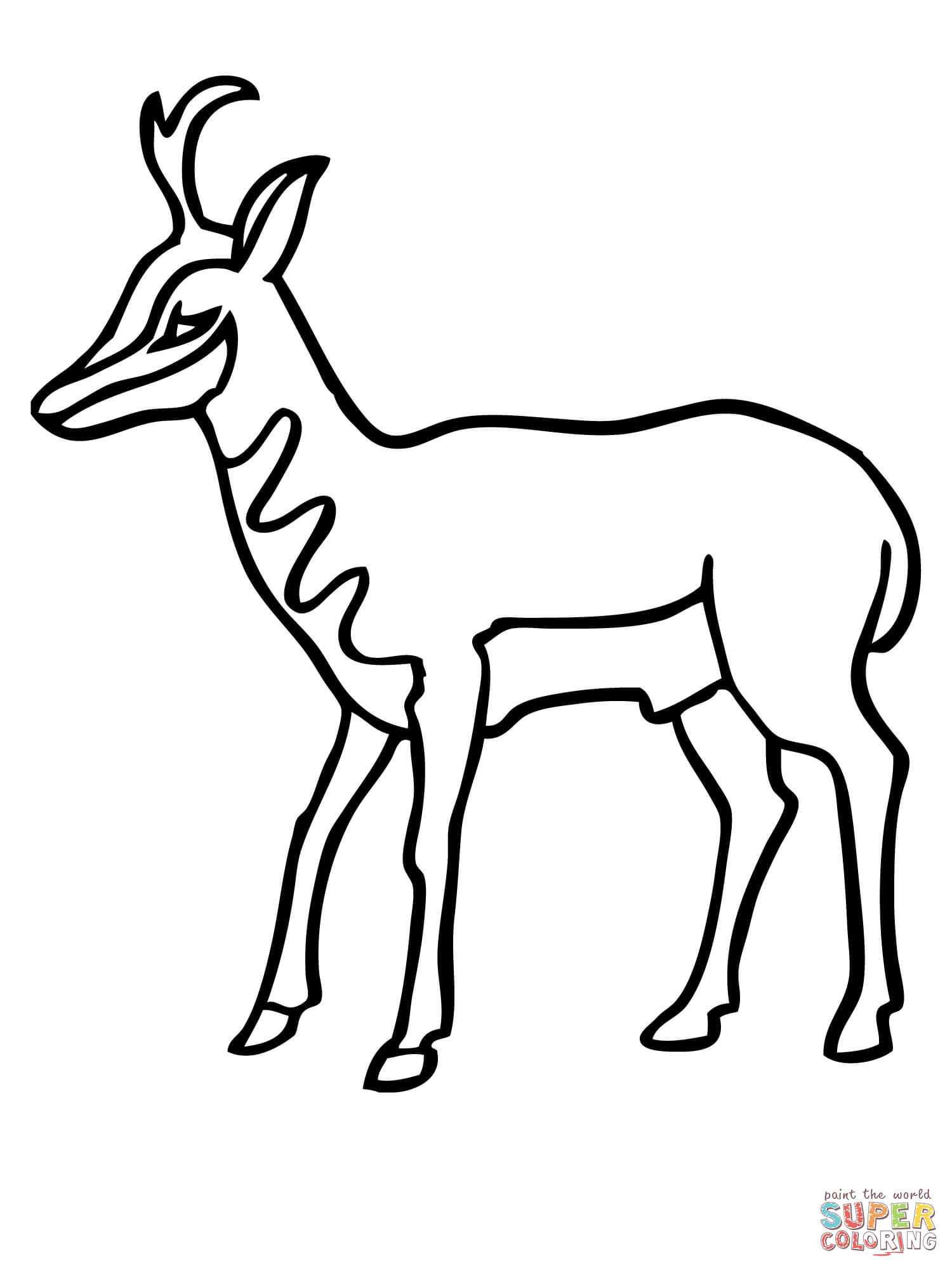 American Antelope Pronghorn Coloring Page