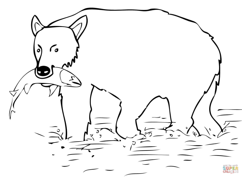 Dibujo De El Oso Pardo Cazo Un Salmon Para Colorear