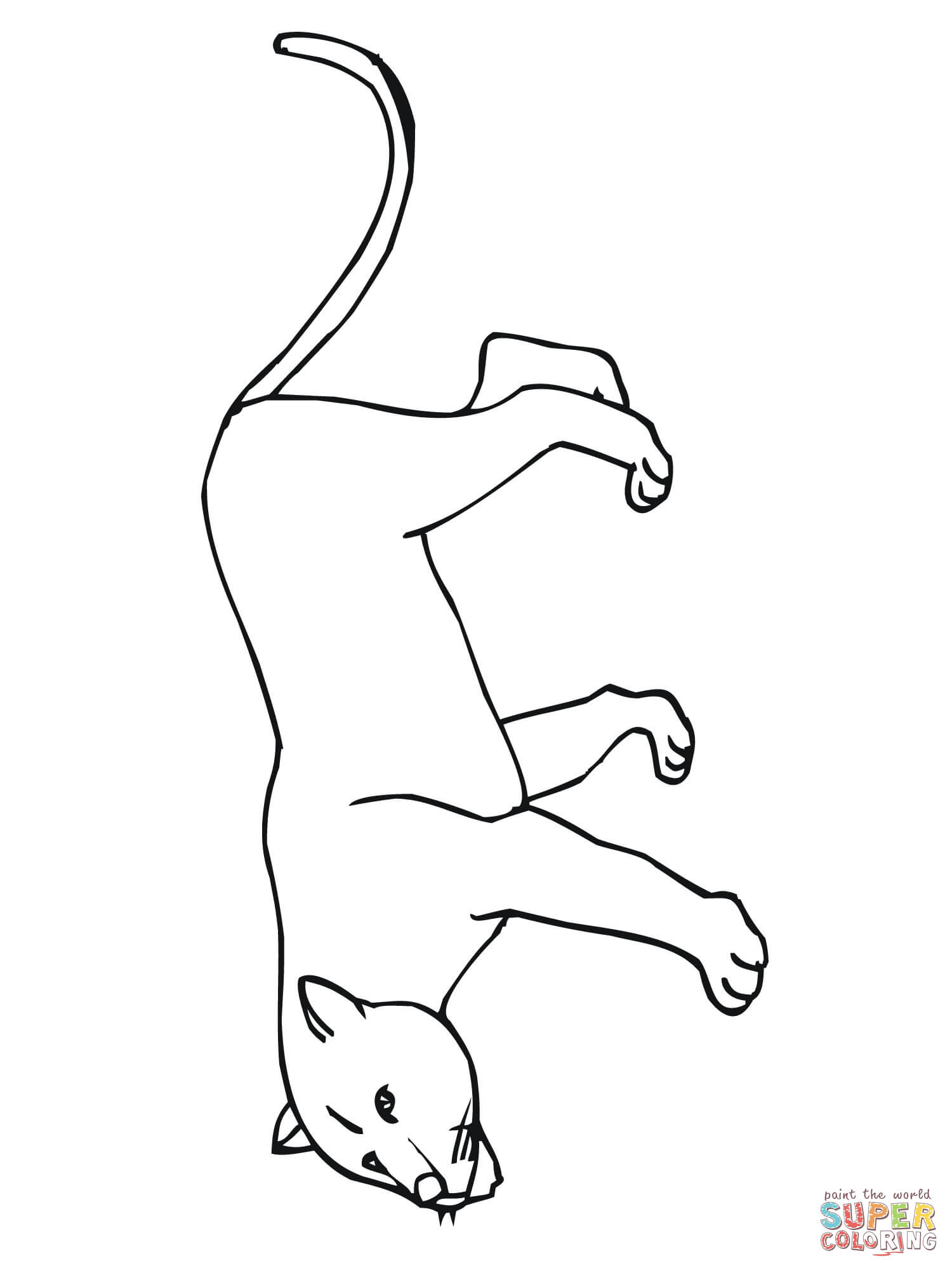 Cougar Or Puma Or Panther Or Mountain Lion Coloring Page