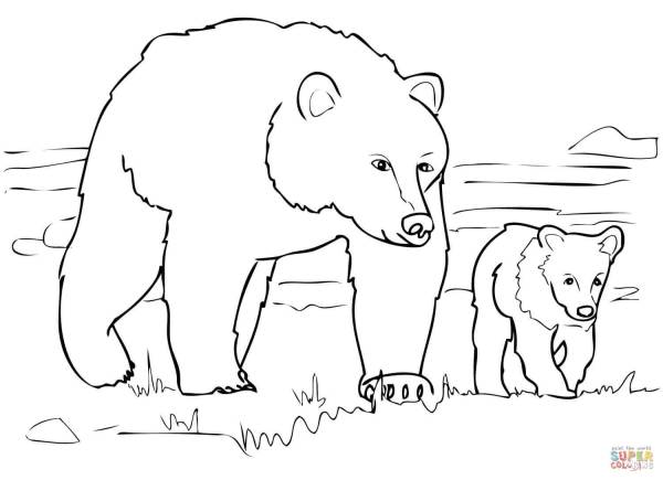 bears coloring pages # 5