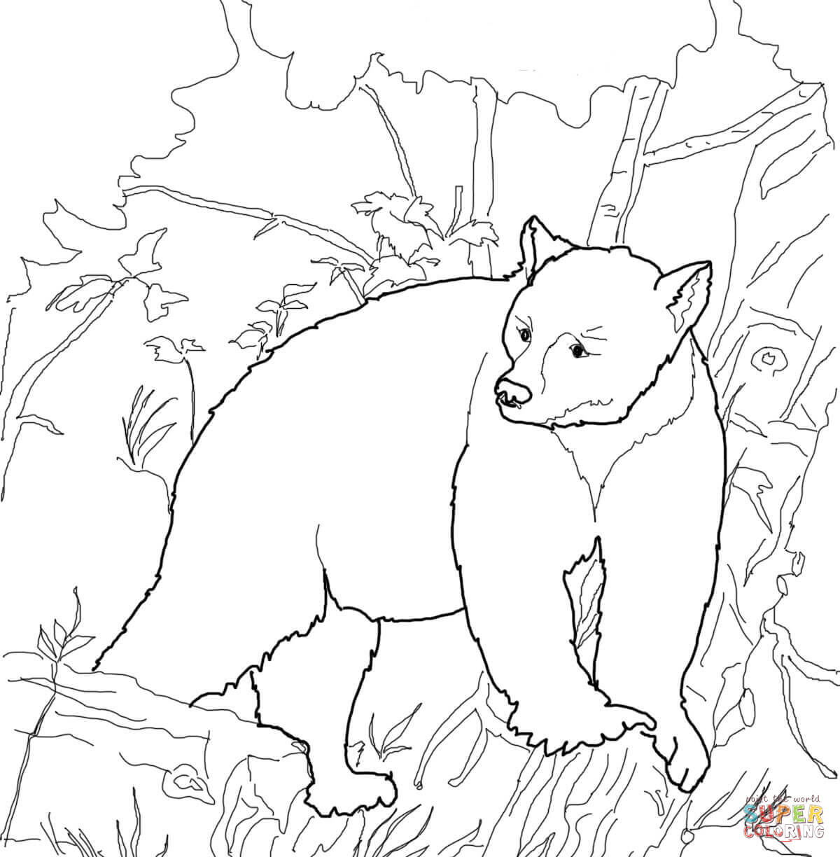 american black bears coloring pages free coloring pages