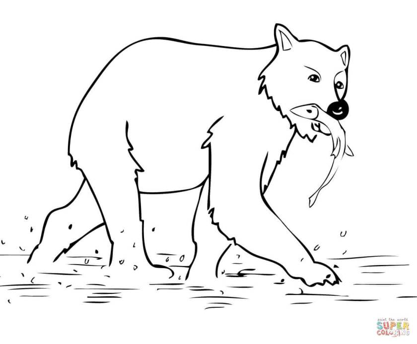 young brown bear coloring page  free printable coloring pages