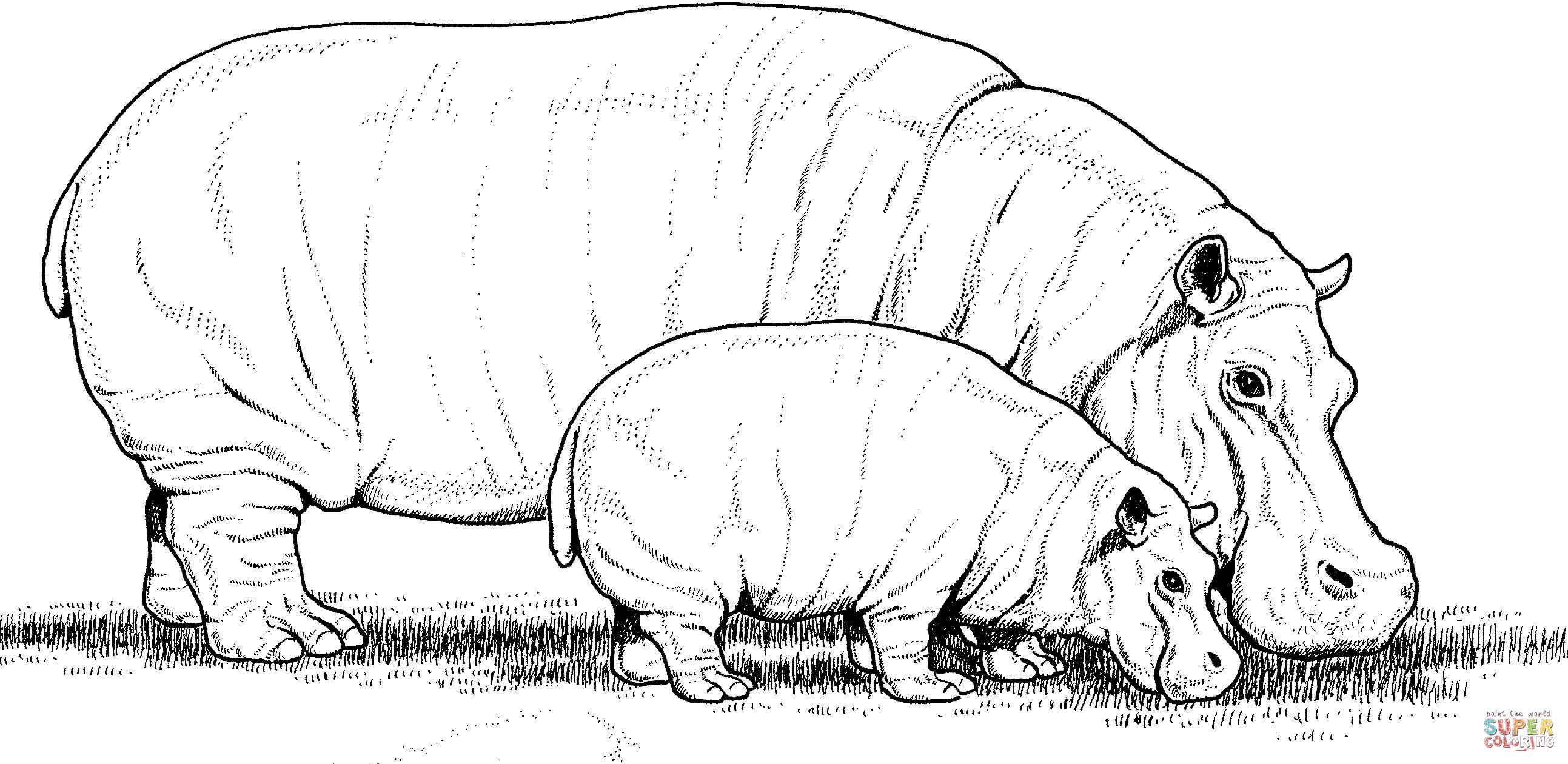 baby hippo with mother coloring page free printable coloring pages