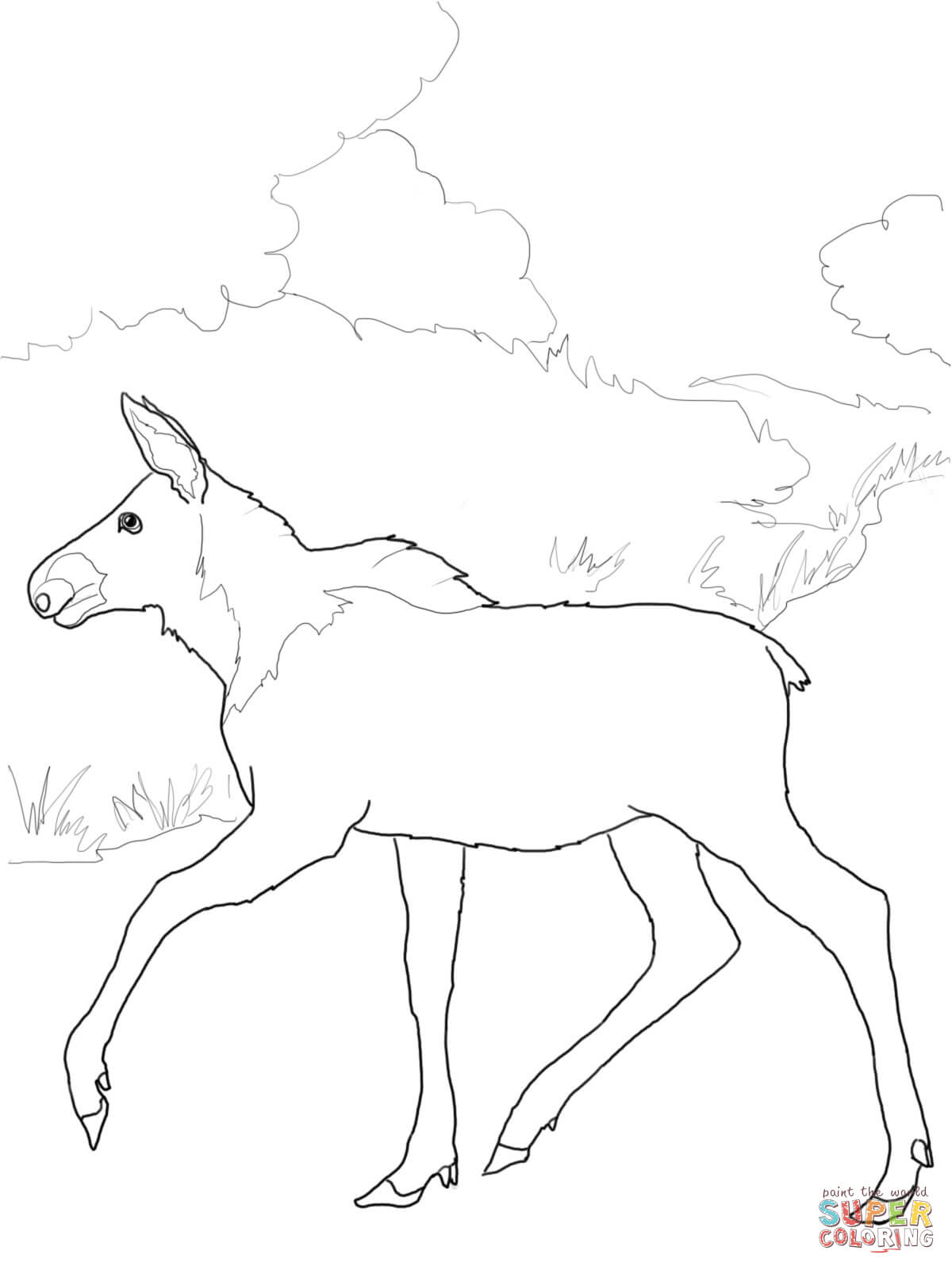 baby moose coloring page free printable coloring pages