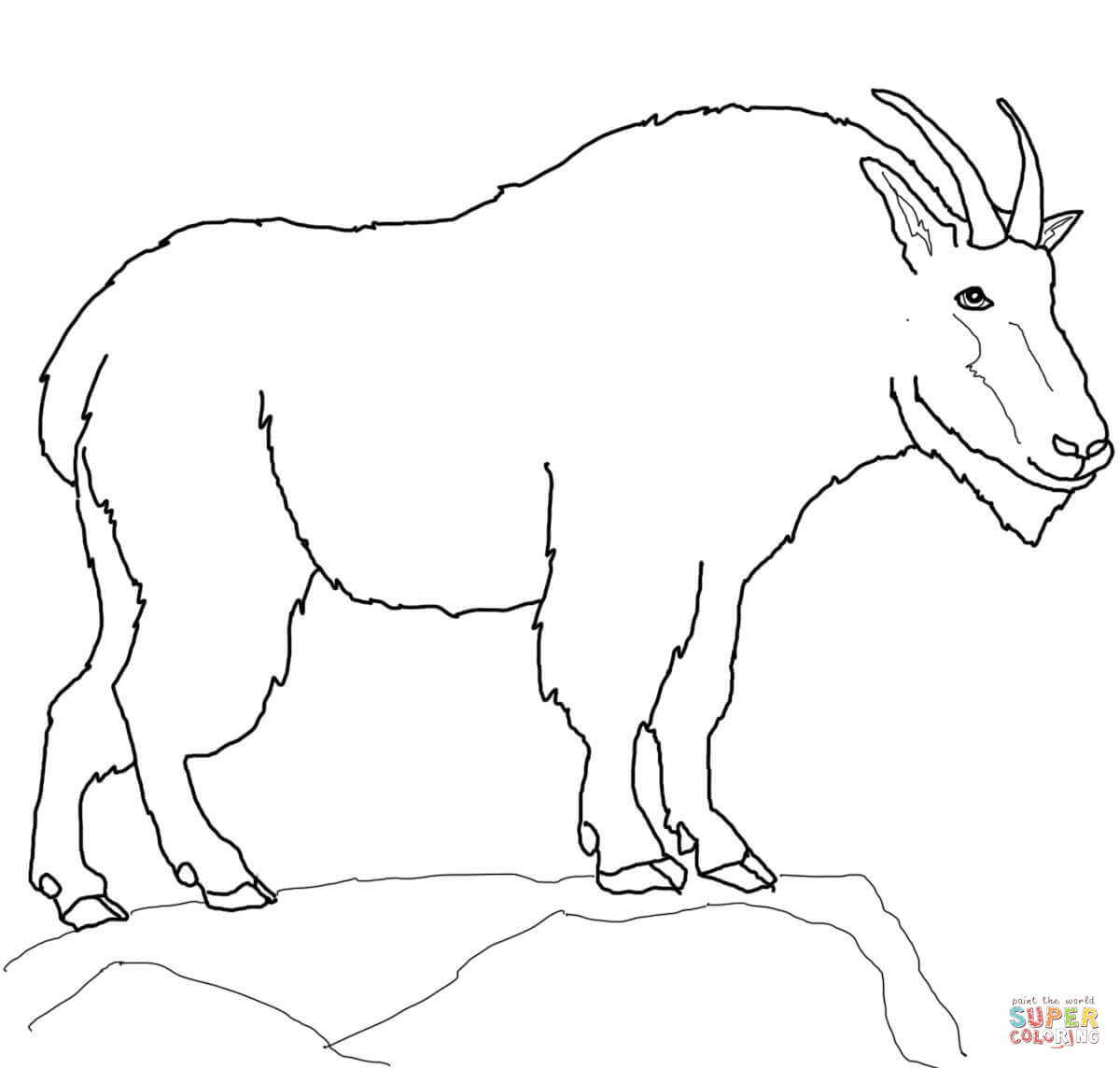 Mountain Goat Coloring Pages Free Coloring Pages
