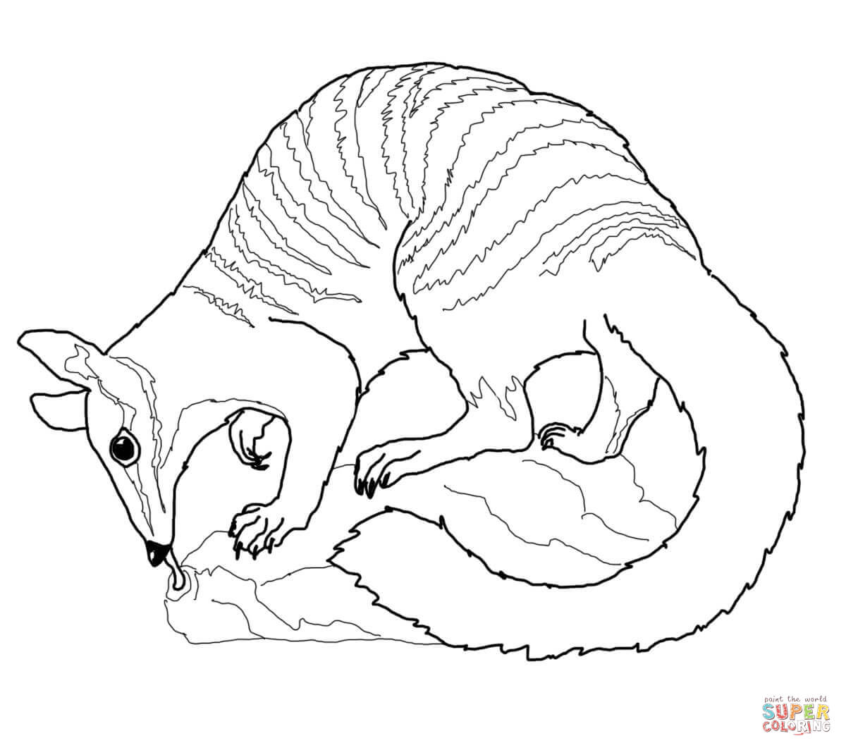 australia coloring pages free coloring pages