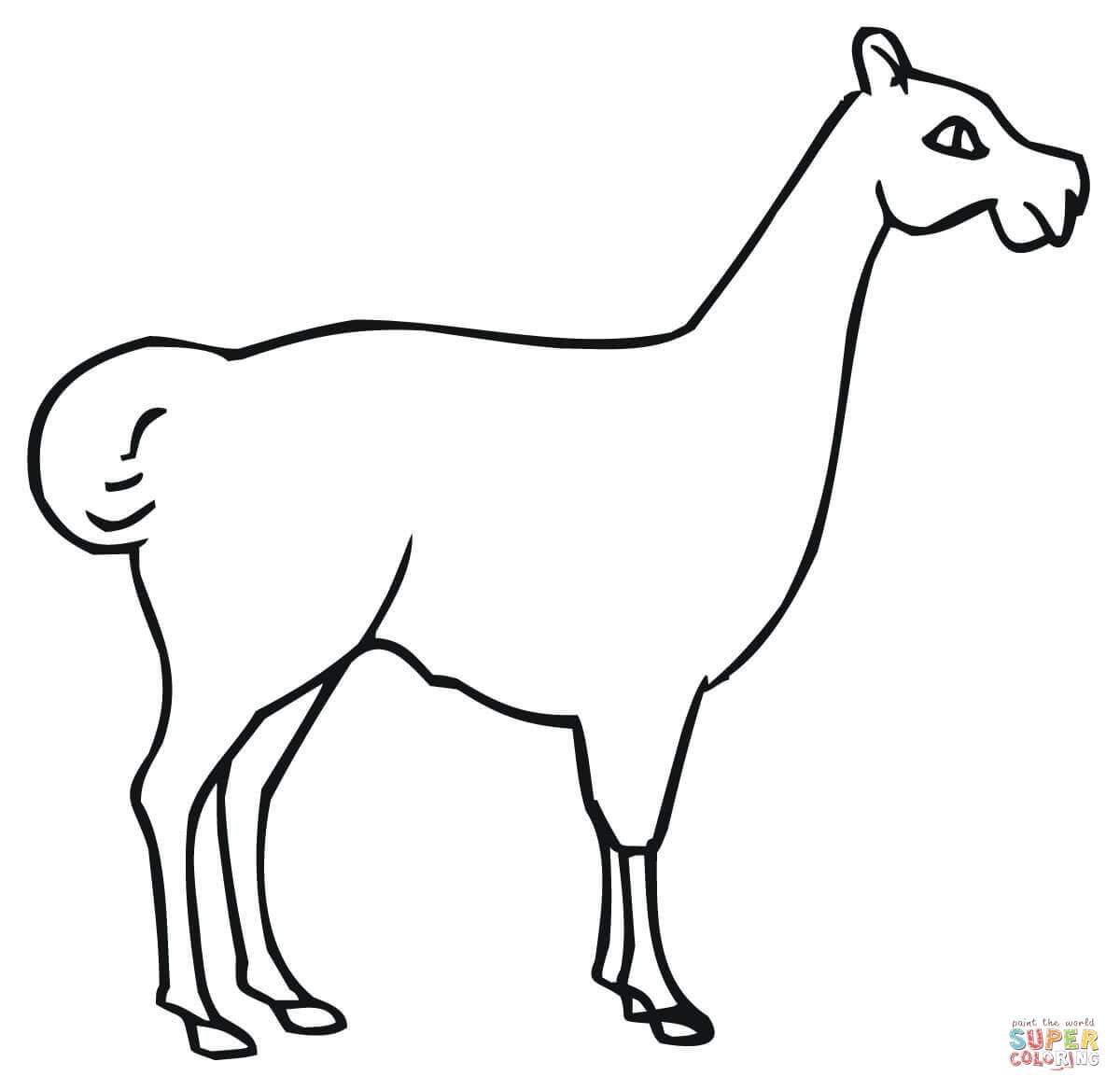 Llama Printable Coloring Pages