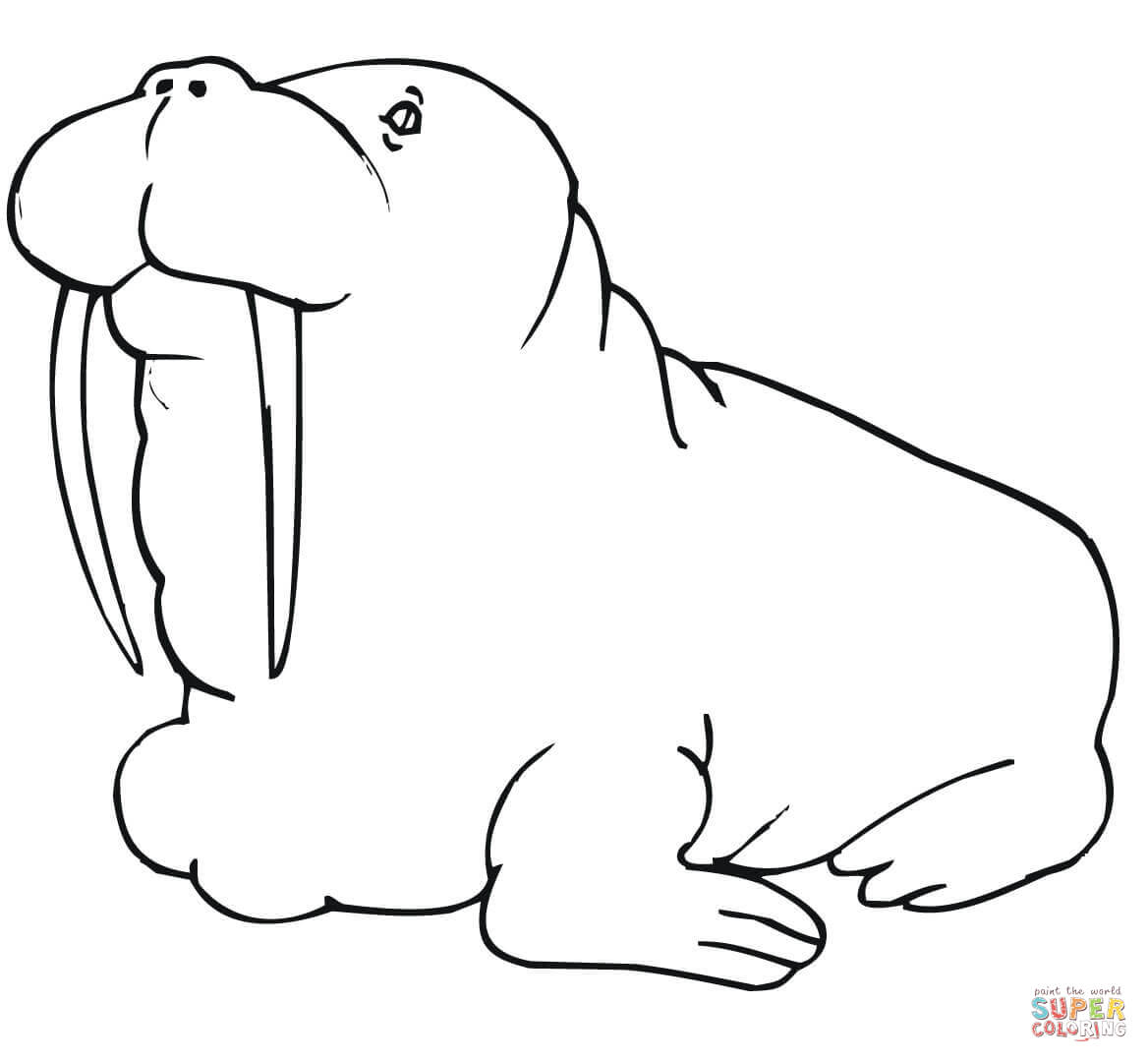 Fat Walrus Coloring Page