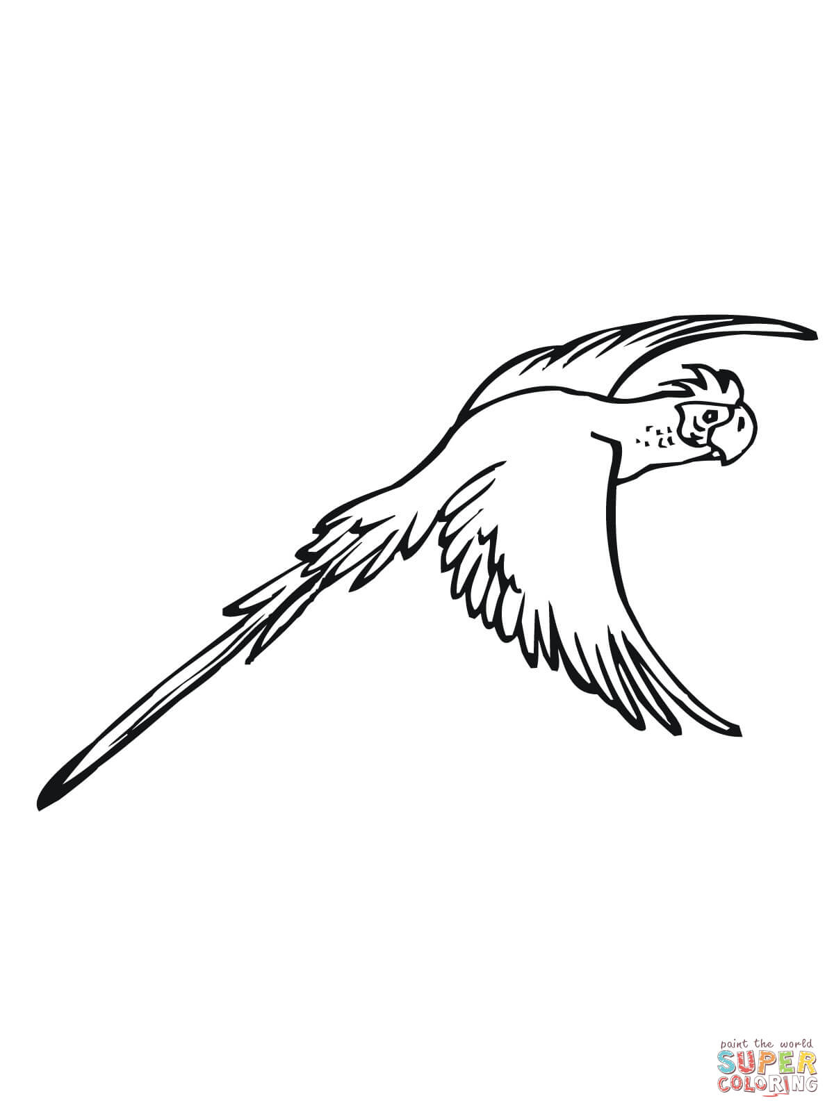 Ausmalbild Fliegender Sittich