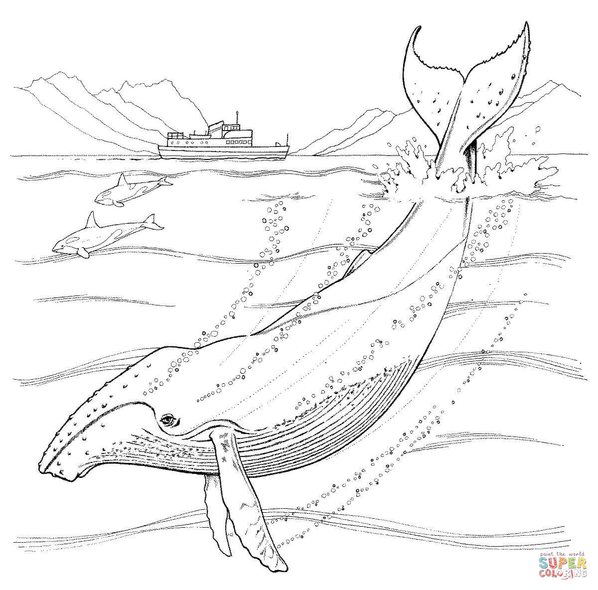 humpback whale coloring pages free coloring pages