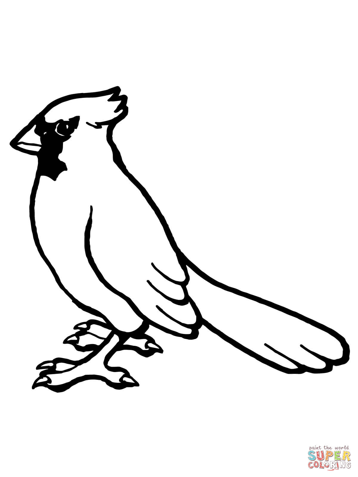 Nothern Cardinal Bird Coloring Page