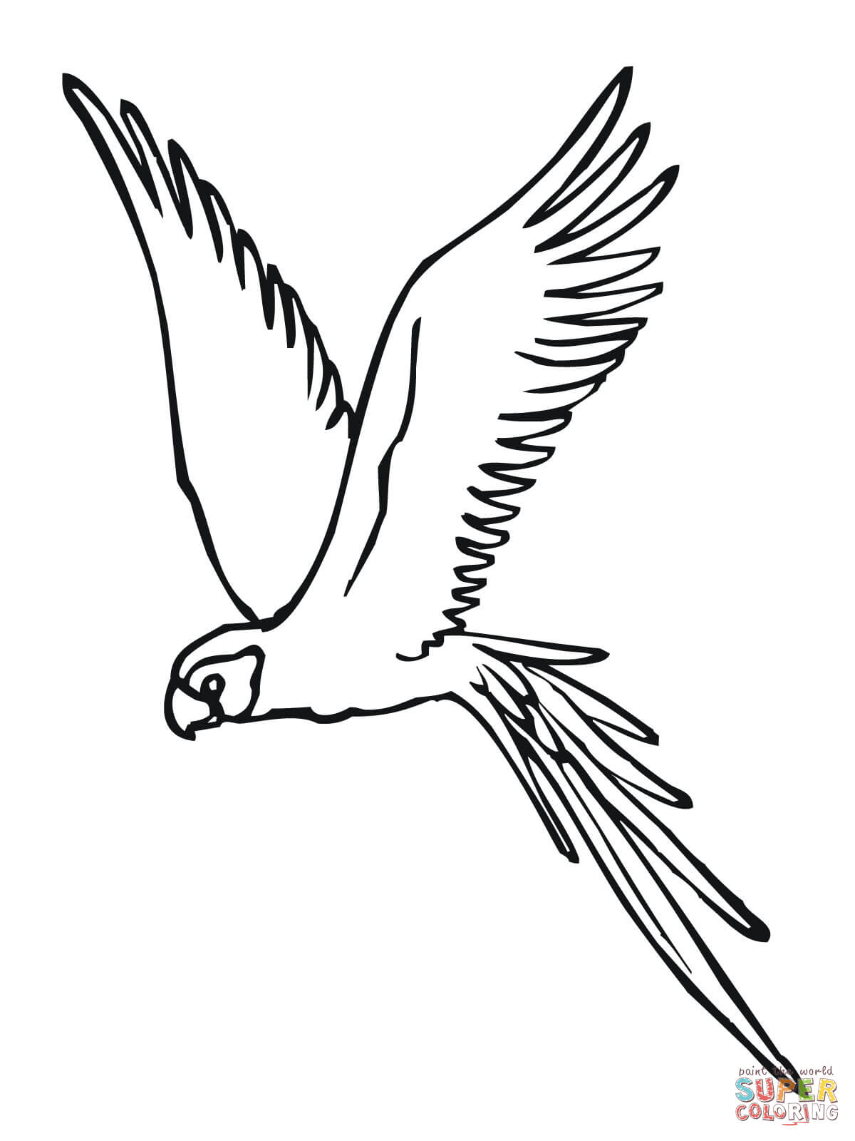 Parakeet Fly Coloring Page