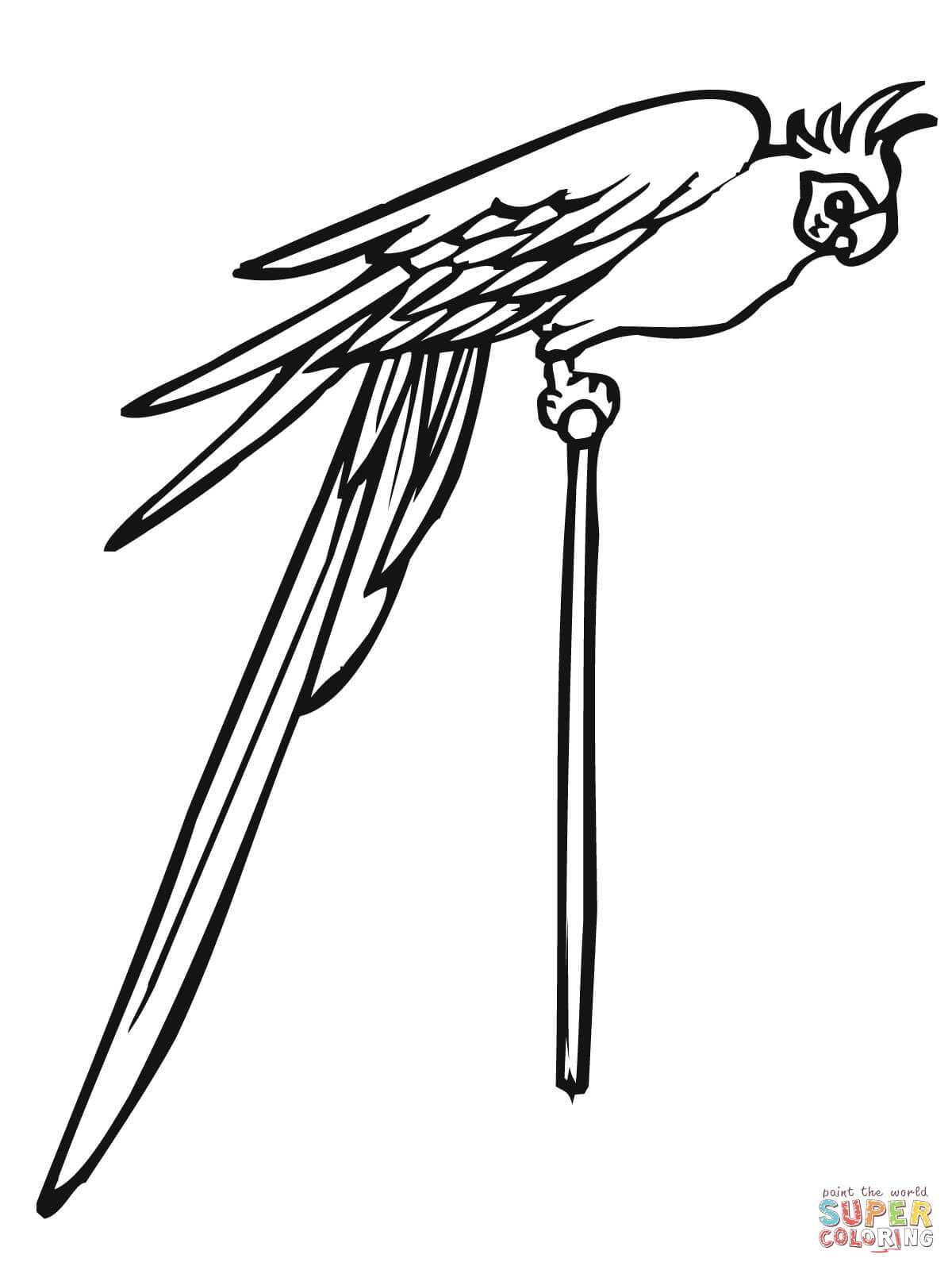 Parakeet On A Pole Coloring Page