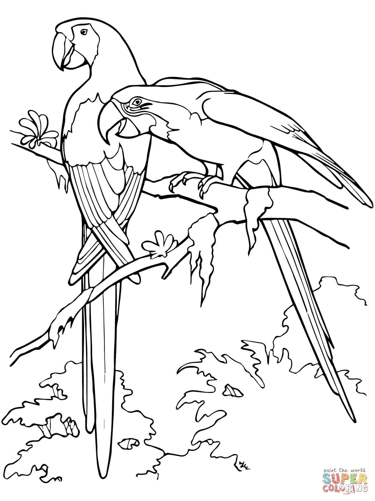 scarlet macaws coloring page free printable coloring pages