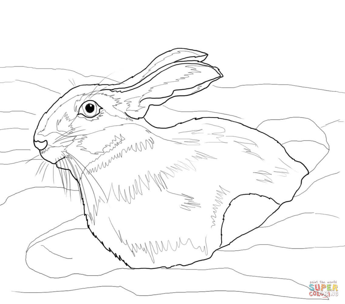 Pin Printable Rabbit Cake Ideas And Designs