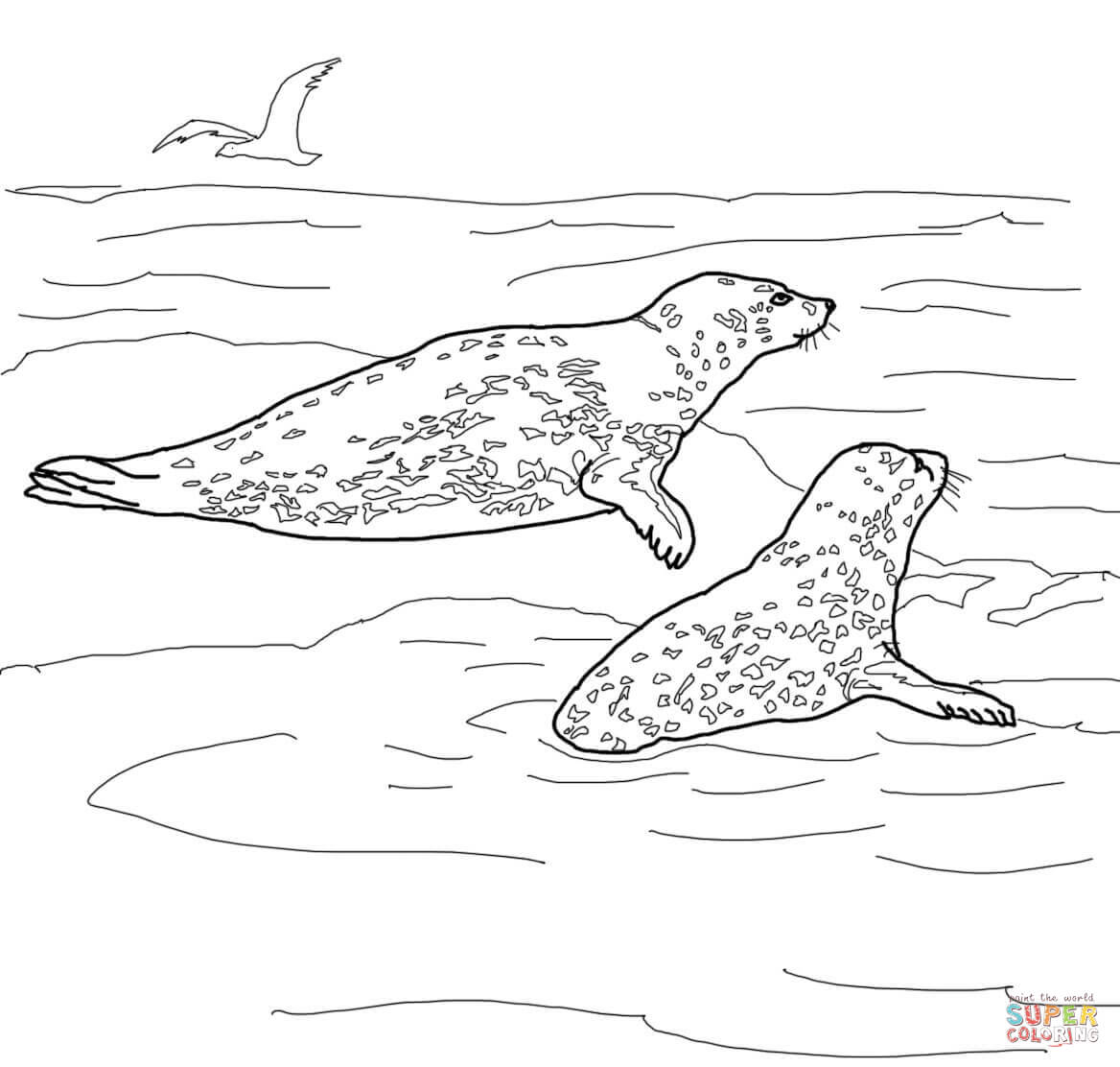 two leopard seals coloring page free printable coloring pages
