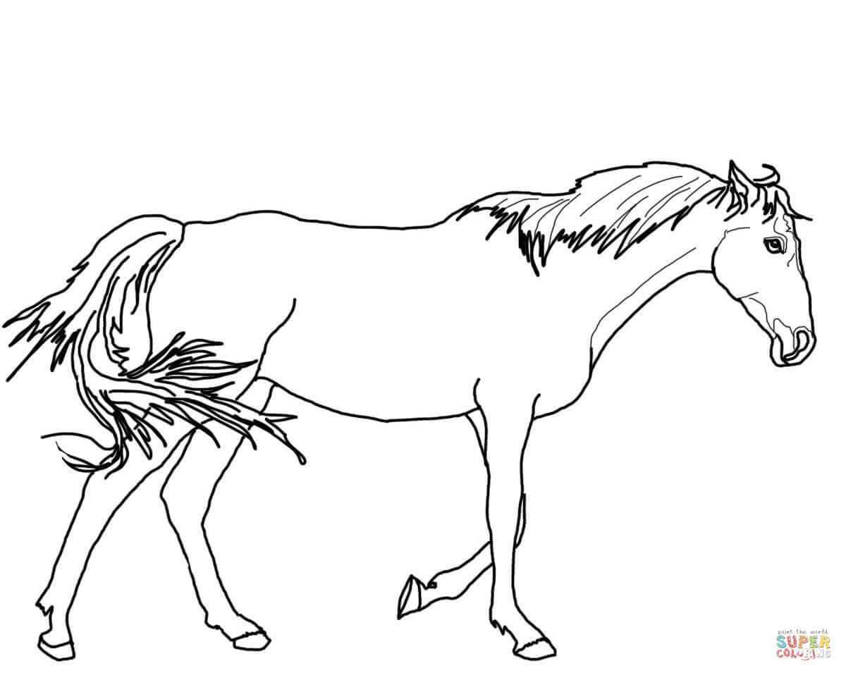 Walking Thoroughbred Horse Coloring Page