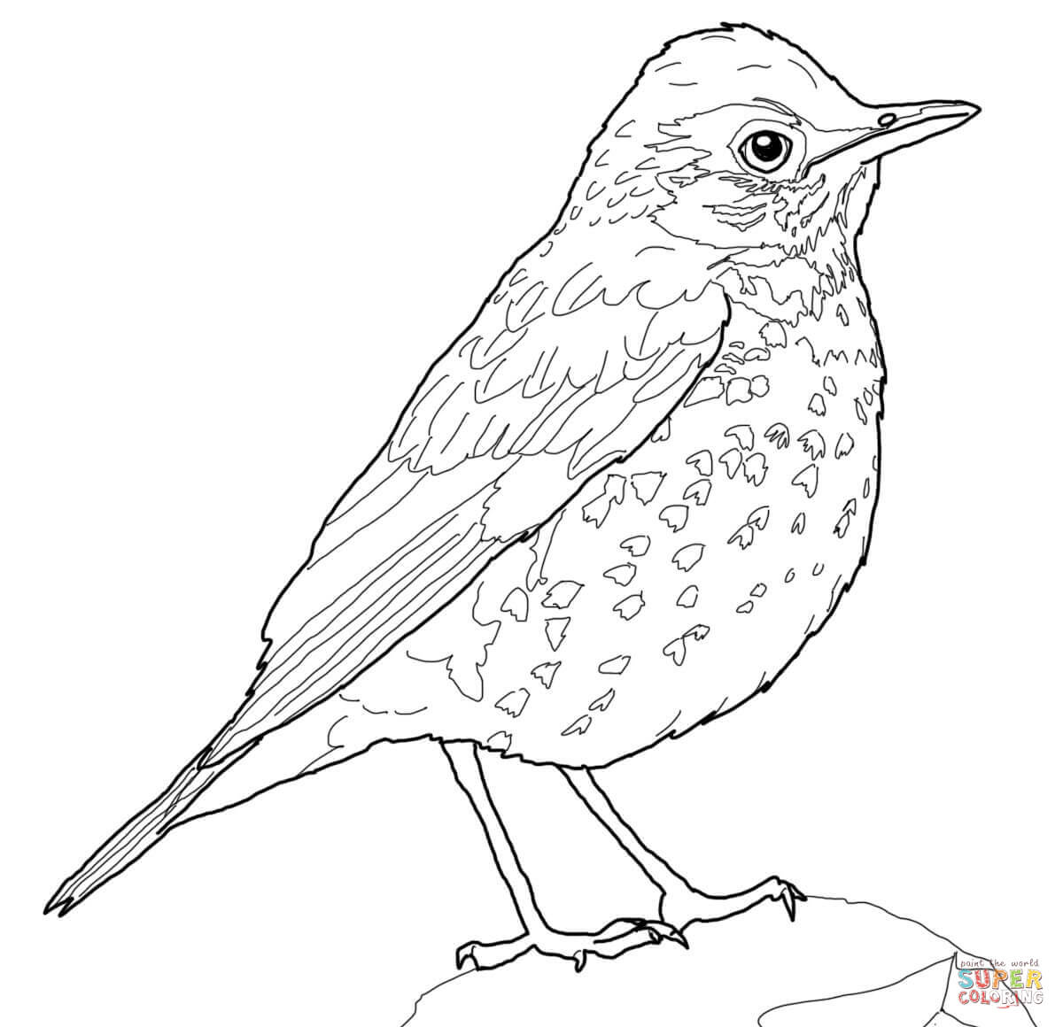 thrush coloring pages free coloring pages