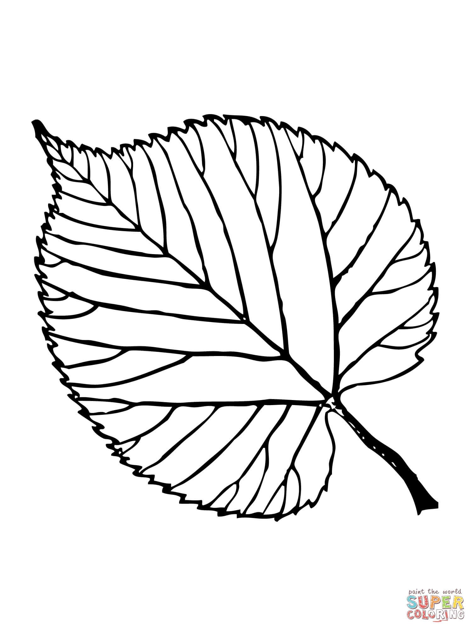 Ausmalbild Lindenblatt