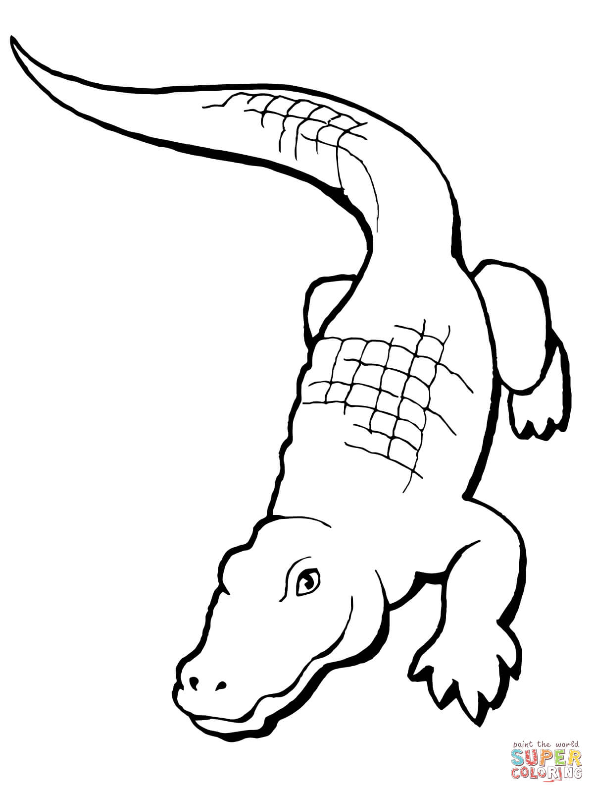 realistic alligator coloring page free printable coloring pages