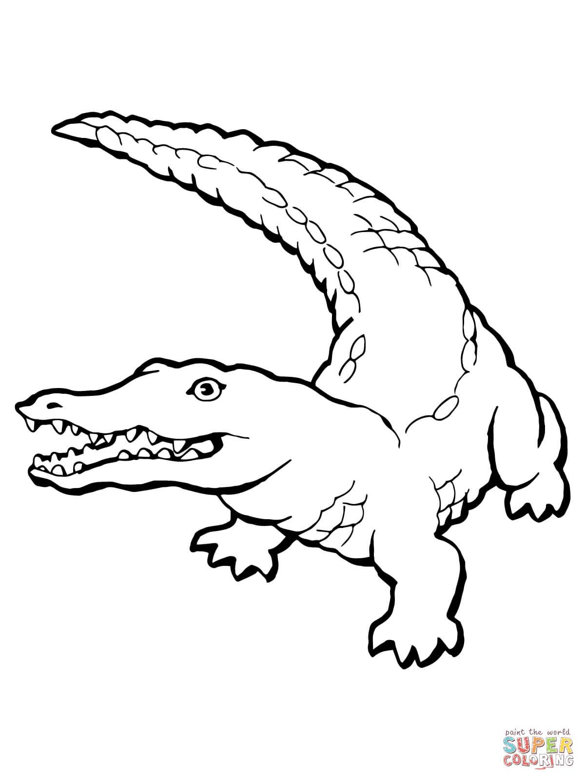 Ausmalbild Realistisches Krokodil