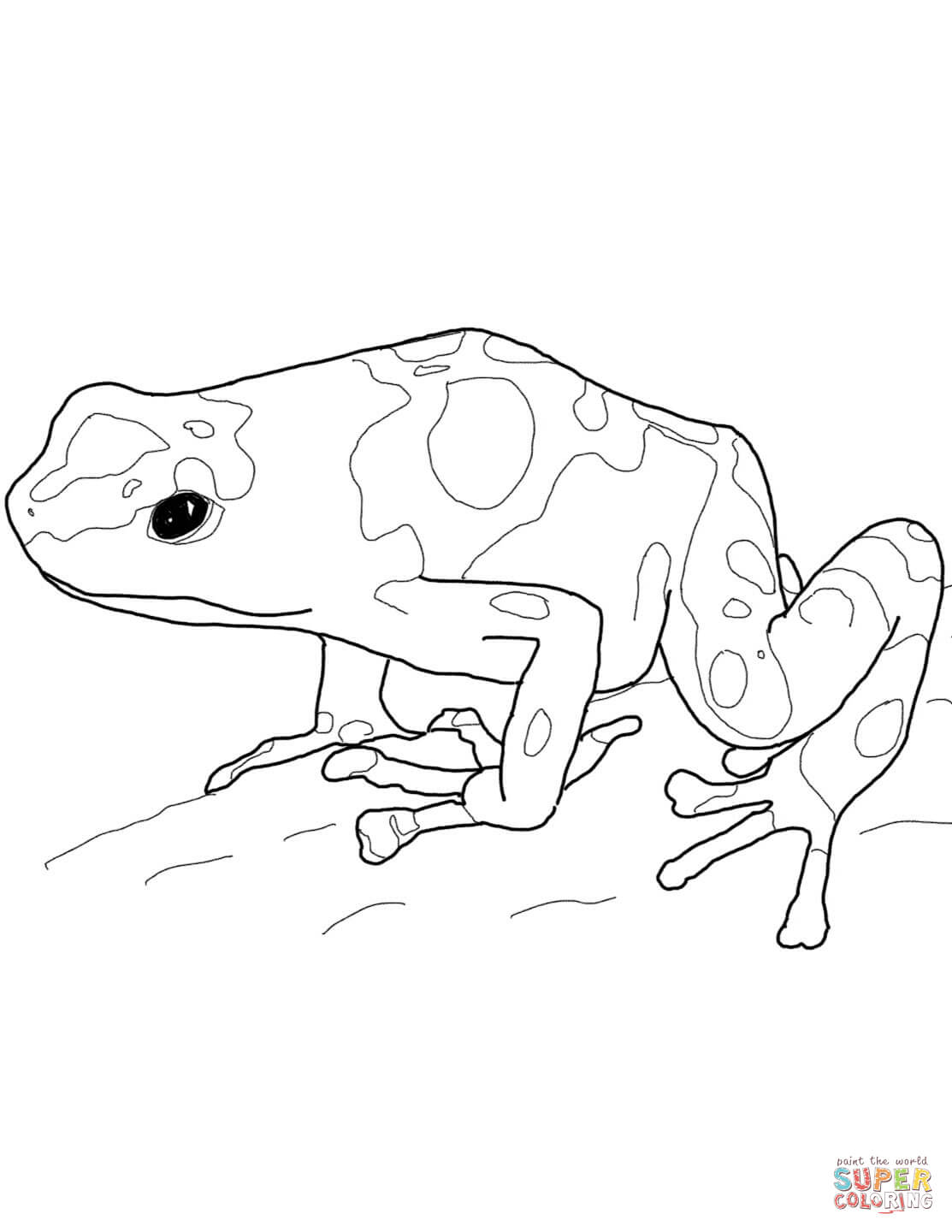 Yellow Banded Poison Dart Frog Coloring Page