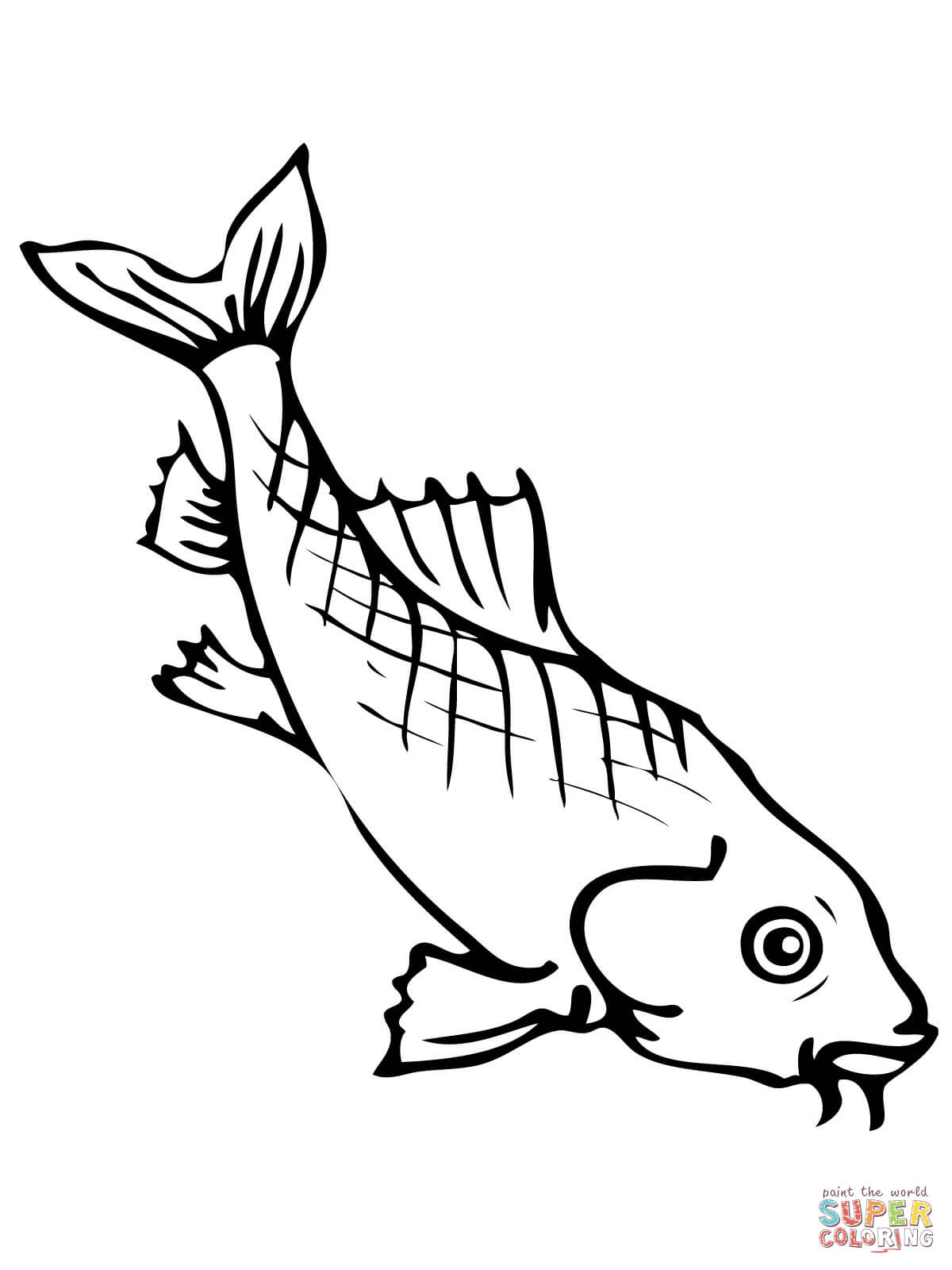Freshwater Carp Coloring Page Free Printable Coloring Pages