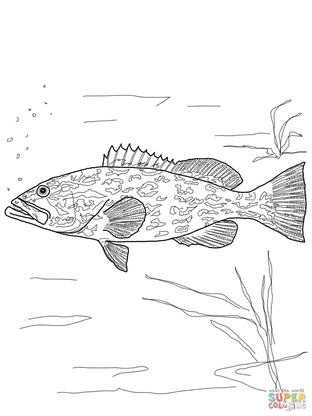 Gag Grouper Coloring Page Free Printable Coloring Pages