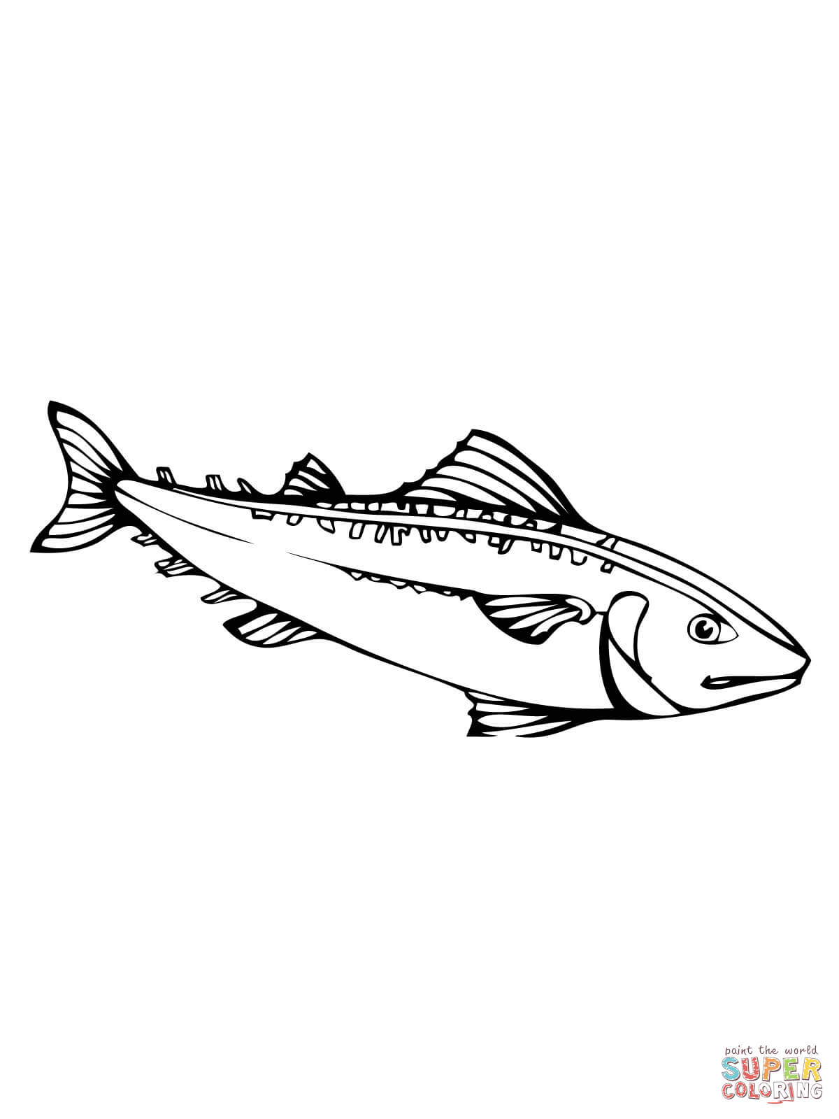 Mackerel Fish Coloring Page Free Printable Coloring Pages