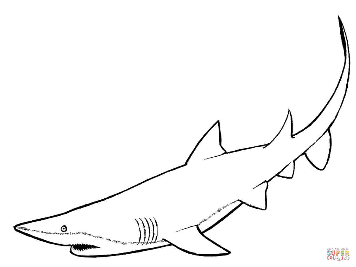 Coloring Pages Whale Shark Coloring Page whale shark coloring page futpal com auromas