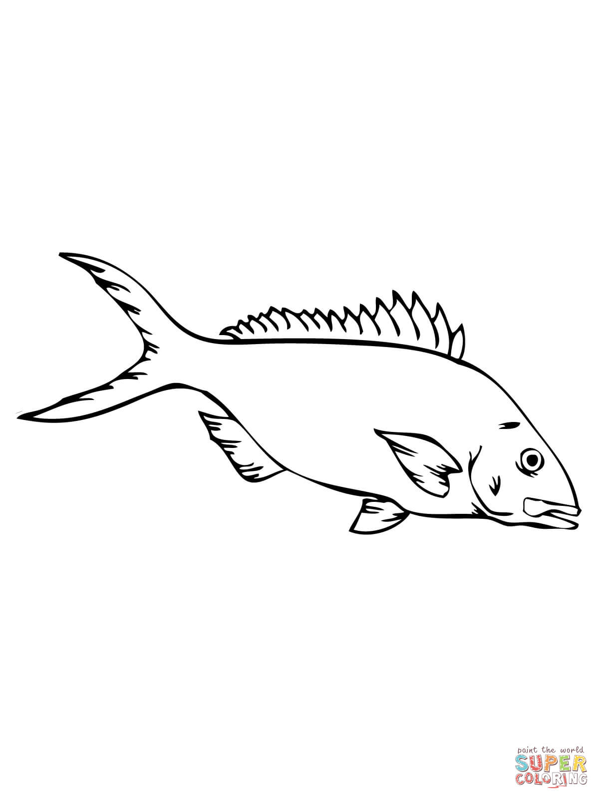 Yellowtail Snapper Coloring Page