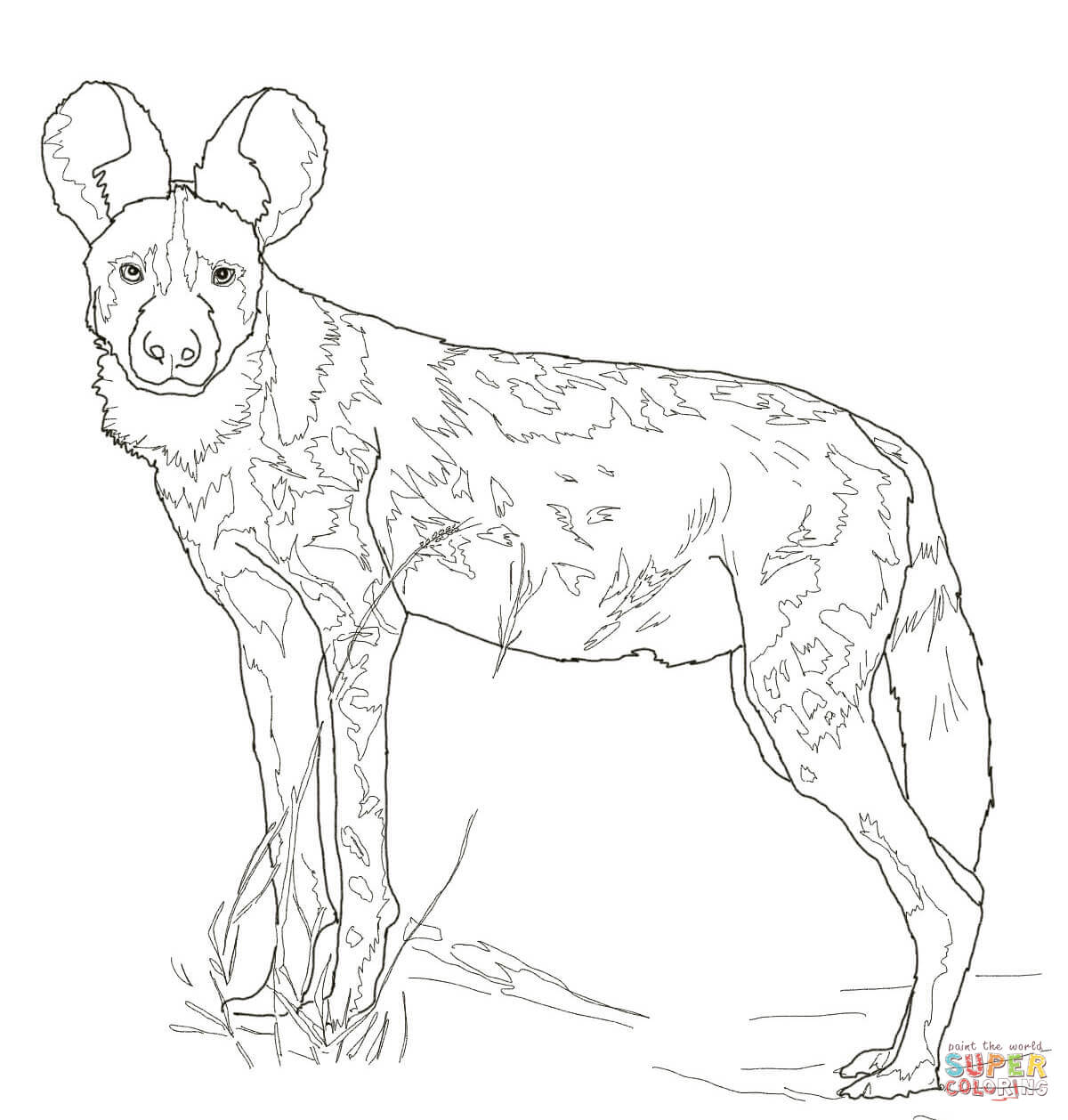 African Wild Dog Coloring Page